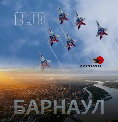 Стрижи в Барнауле 25.07.2020