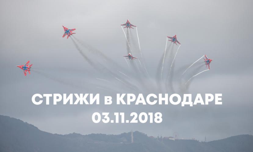 Стрижи в Краснодаре 03 ноября 2018