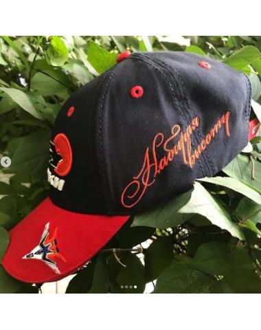 Бейсболка Набирая высоту
