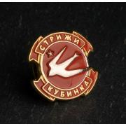 Значок логотип Стрижи Кубинка